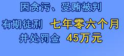 刘岩被判七年零六个月,并处罚金45万元